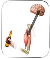 脳と身体のメカニズム