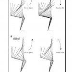 脳卒中患者の立ち上がりの動作分析 その⑨ 立位→座位 Stand to sitへの意識とCOM