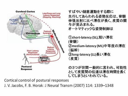 先行性の姿勢制御に関する図