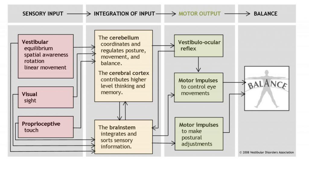 Balance-motor-output_0