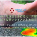 vol.12: 脳卒中/脳梗塞のリハビリ論文サマリー:足底圧と歩行能力に影響を及ぼす姿勢アライメントとは??