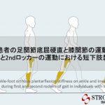 vol2  脳卒中/脳梗塞のリハビリ論文サマリー:足関節底屈硬直と膝関節の運動学と歩行の1stロッカーと2ndロッカーの運動における短下肢装具の影響