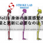 vol.18: 脳卒中/脳梗塞のリハビリ論文サマリー: 身体の垂直感覚の構築と更新に必要なのは??
