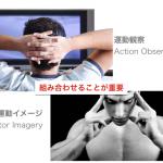 <脳科学トピック>バランス向上には運動イメージと運動観察のどちらが有効か?