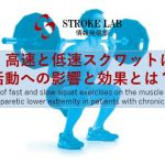 vol.19: 脳卒中/脳梗塞のリハビリ論文サマリー:高速と低速スクワットによる筋活動への影響と効果とは??