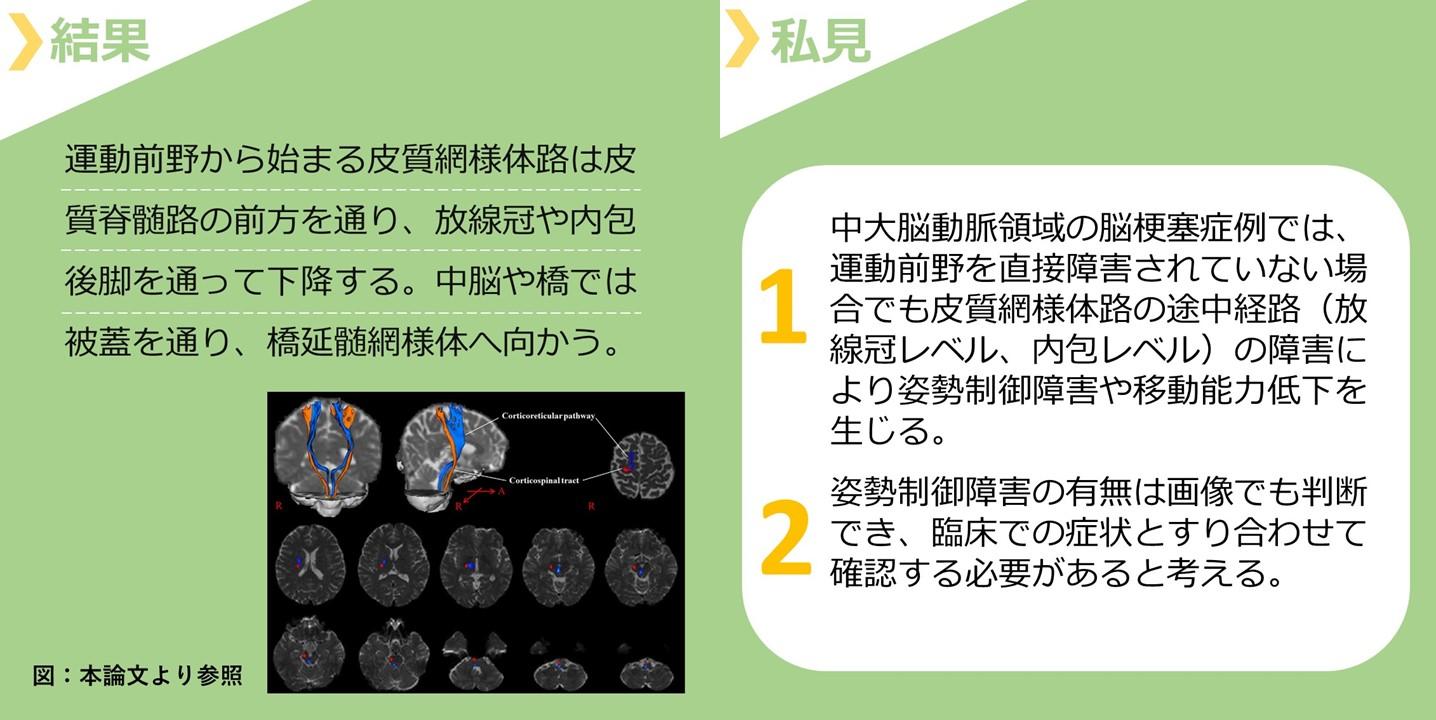 見出し画像2.皮質網様体路