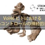 vol.46:ヒトにおける姿勢コントロールの神経的表象                  脳卒中/脳梗塞のリハビリ論文サマリー
