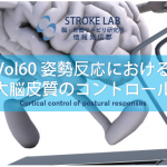 vol.60:姿勢反応における大脳皮質のコントロール                     脳卒中/脳梗塞のリハビリ論文サマリー
