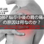 vol.67:脳卒中後の肩の痛みの原因は何なのか?                        脳卒中/脳梗塞のリハビリ論文サマリー