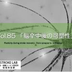 vol.85:脳卒中(脳梗塞)後の脳内可塑性    脳卒中/脳梗塞のリハビリ論文サマリー