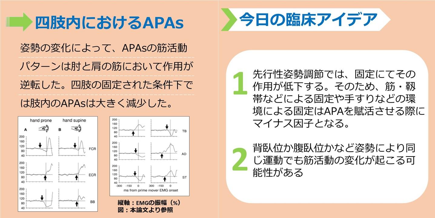 先行随伴性姿勢制御 見出し画像(2)