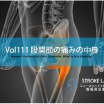 vol.111:股関節の痛みの中身  脳卒中/脳梗塞リハビリ論文サマリー