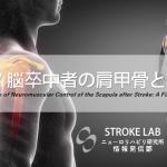 vol.127:脳卒中者の肩甲骨と筋活動   脳卒中/脳梗塞リハビリ論文サマリー