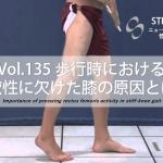 歩行時における柔軟性に欠けた膝(Stiff Knee)の原因とは?:脳卒中(脳梗塞)リハビリに関わる論文サマリー vol.135