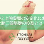 vol.172:上腕骨頭の安定化における上腕二頭筋腱の役割   脳卒中/脳梗塞のリハビリ論文サマリー
