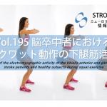 vol.195:脳卒中者と健常成人のスクワット動作における前脛骨筋と腓腹筋の筋活動の違い   脳卒中/脳梗塞のリハビリ論文サマリー