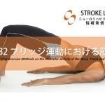 vol.183:ブリッジ運動における筋活動  脳卒中/脳梗塞のリハビリ論文サマリー