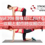 vol.208:腹横筋における単一収縮と動作時収縮の比較   脳卒中/脳梗塞のリハビリ論文サマリー