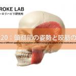 vol.220:頭頚部の姿勢と咬筋の活動   脳卒中/脳梗塞のリハビリ論文サマリー
