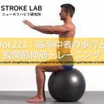 vol.223:脳卒中者の歩行と股関節伸筋トレーニング   脳卒中/脳梗塞のリハビリ論文サマリー