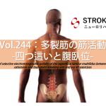 vol.244:多裂筋の筋活動-四つ這いと腹臥位-   脳卒中/脳梗塞のリハビリ論文サマリー