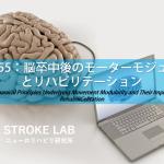 vol.255:脳卒中後のモーターモジュールとリハビリテーション  脳卒中/脳梗塞のリハビリ論文サマリー
