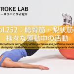 vol.252:恥骨筋・梨状筋の様々な運動中の活動   脳卒中/脳梗塞のリハビリ論文サマリー