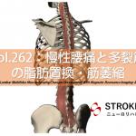 vol.262:慢性腰痛と多裂筋の脂肪置換・筋萎縮   脳卒中/脳梗塞のリハビリ論文サマリー