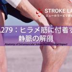 vol.279:ヒラメ筋に付着する静脈の解剖   脳卒中/脳梗塞のリハビリ論文サマリー