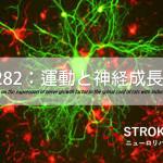 vol.282:運動と神経成長因子   脳卒中/脳梗塞のリハビリ論文サマリー