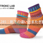 vol.285:靴下の違いとまたぎ動作   脳卒中/脳梗塞のリハビリ論文サマリー