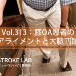 vol.313:膝OA患者の膝アライメントと大腿四頭筋  脳卒中/脳梗塞のリハビリ論文サマリー