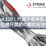 vol.320:尺側手根伸筋と遠位橈尺関節の動的安定性   脳卒中/脳梗塞のリハビリ論文サマリー