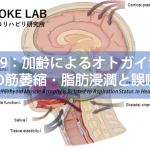 vol.339:加齢によるオトガイ舌骨筋の筋萎縮・脂肪浸潤と誤嚥  脳卒中/脳梗塞のリハビリ論文サマリー