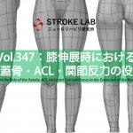 vol.347:膝伸展時の膝蓋骨・ACL・関節反力の役割  脳卒中/脳梗塞のリハビリ論文サマリー