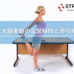 vol.389:大腿直筋の正常MRIと歩行時の役割                                                       脳卒中/脳梗塞のリハビリ論文サマリー