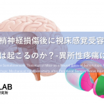 vol.405:末梢神経損傷後に視床感覚受容野のリモデリングは起こるのか?-異所性疼痛に関する研究-  脳卒中/脳梗塞のリハビリ論文サマリー