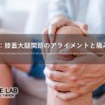 vol.409:膝蓋大腿関節のアライメントと痛みの関係      脳卒中/脳梗塞のリハビリ論文サマリー