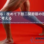 改めて下肢二関節筋の役割について考える