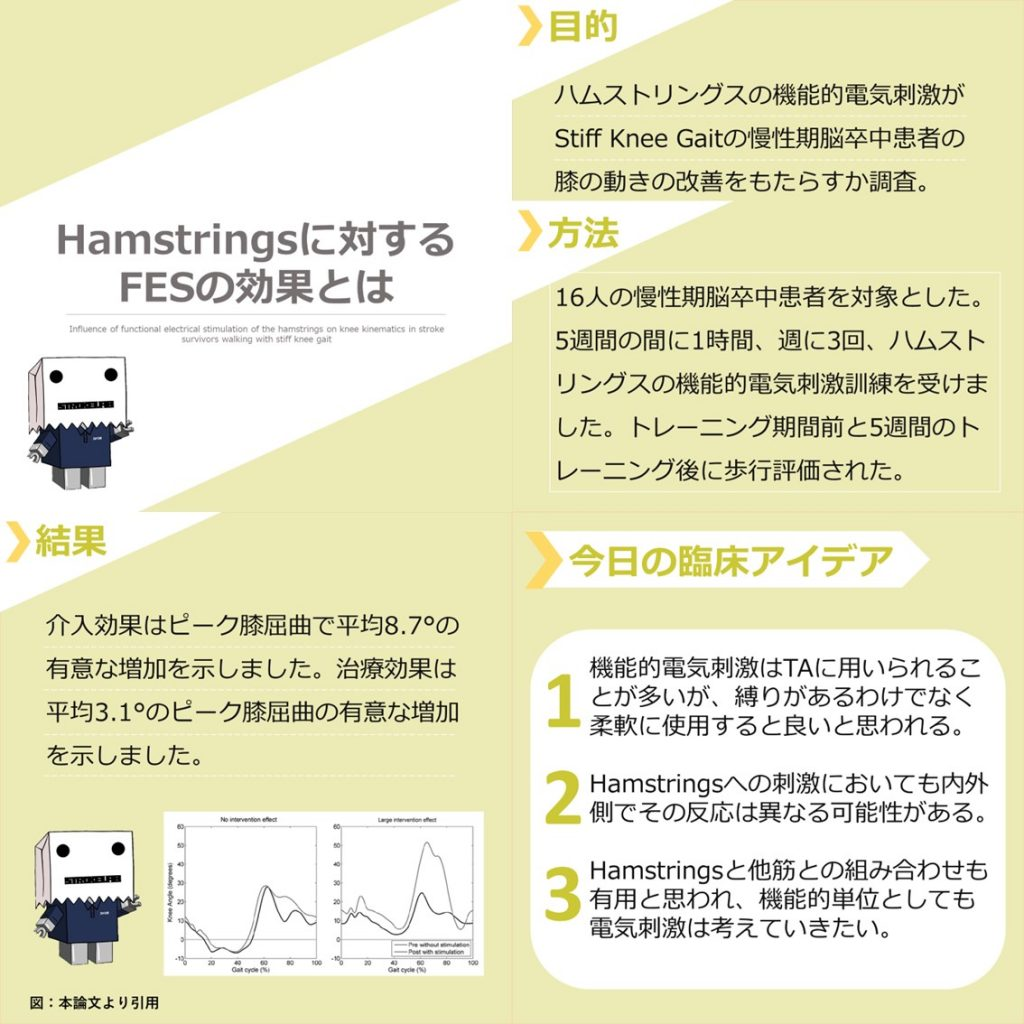 Hamstringsに対する FESの効果とは